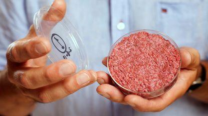 Kweekvlees toch niet milieuvriendelijker dan gewone biefstuk