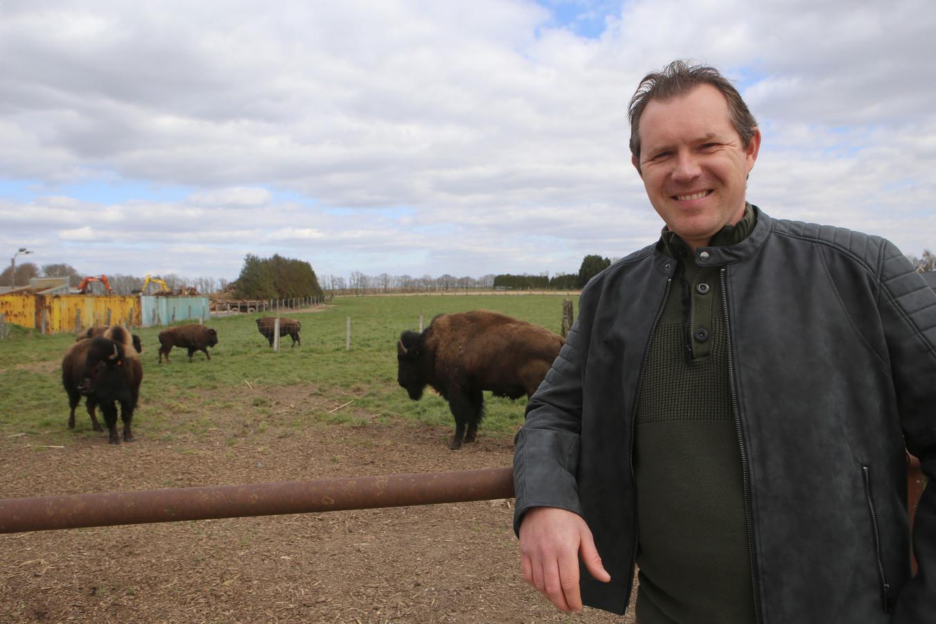 Bert Geuvens begon vorig jaar een bizonboerderij.
