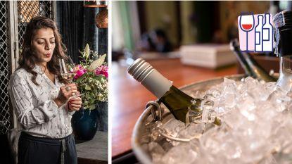 """""""De meeste Vlamingen drinken hun rode wijn te warm en hun witte te koud"""": Sepideh geeft de perfecte temperaturen"""