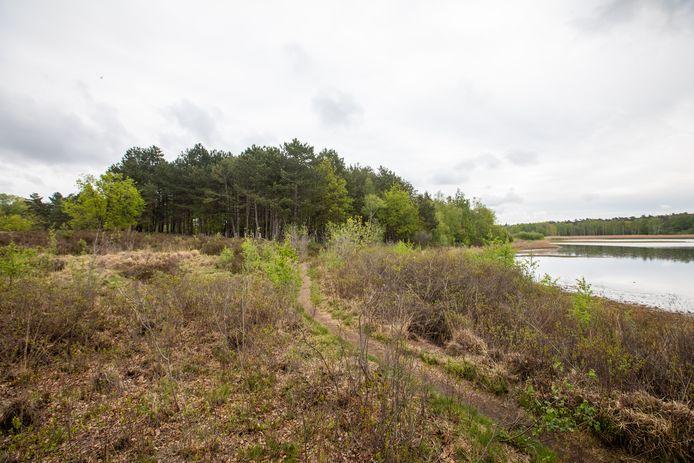 Natuurpunt gaat 28 hectare aan bos kappen in De Maten.