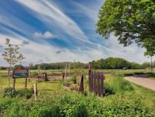 Uitbreiding tuinderij Wortels in Breda leidt tot dorpsrel: voor- en tegenstanders kruisen de degens