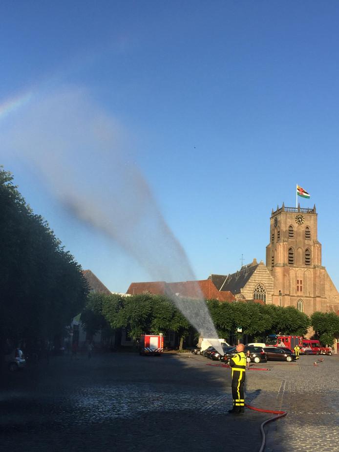 De historische Markt in Geertruidenberg kampt ieder jaar met grote overlast door bladluizen in de bladlinden. Maar dit jaar is de plaag enorm