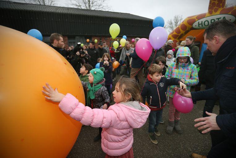 De grote ballon wordt de lucht ingelaten.