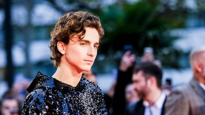 Timothée Chalamet heeft hoofdrol te pakken in nieuwe 'Willy Wonka'-film