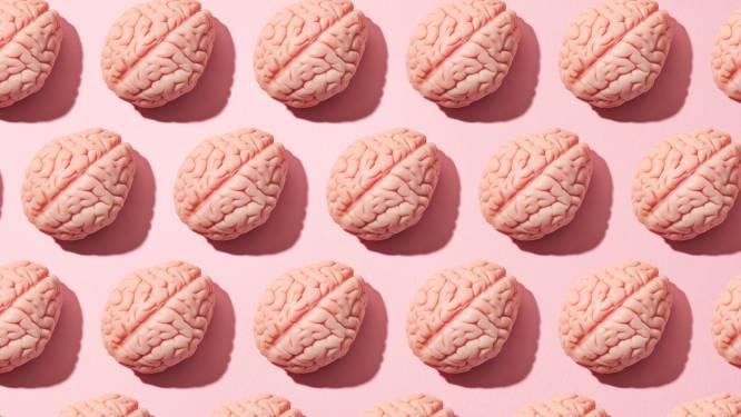 """Ook onder de hersenpan zijn man en vrouw anders: """"Het brein van vrouwen is kleiner, maar werkt harder"""""""