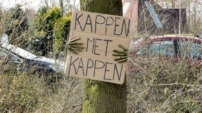 Protestactie tegen kappen van bomen op Langenberg