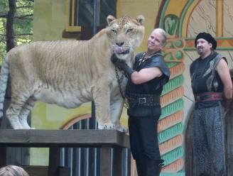 'Tiger King'-ster Doc Antle aangeklaagd voor dierenmishandeling