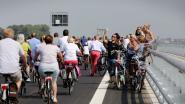 Bruggeling krijgt kans om fietsring mee vorm te geven