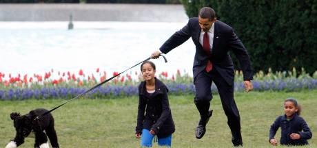 Obama's nemen na ruim tien jaar afscheid van labradoodle Bo