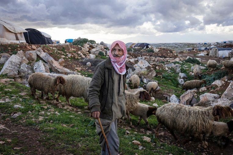 De herder Ali Murai met zijn kudde schapen in Al-Kfeir. Het landschap ligt niet alleen bezaaid met eeuwenoude brokstukken, maar ook met geïmproviseerde onderkomens van vluchtelingen.   Beeld NYT/IVOR PRICKETT