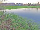 Het gebied Mispelaar in Brugge loopt regelmatig onder water.