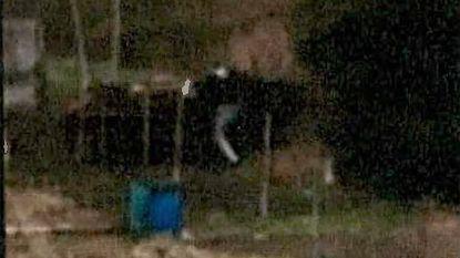 Speurders zagen Abdeslam doodleuk aanbellen bij neef