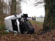 'Maak wegen met bomen veiliger met vangrails'