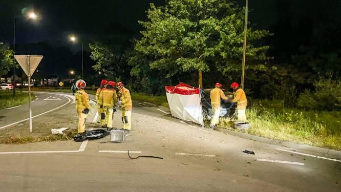 Automobilist overleden bij botsing tegen boom in Budel