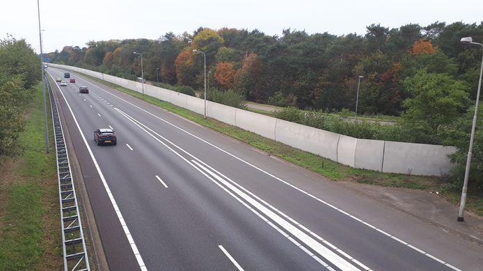 Lelieblank lijken ze, de geluidswallen langs de A59 bij Rosmalen. Prima om zonnepanelen te plaatsen, vinden de wijk- en dorpsraden.