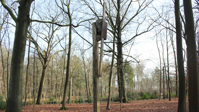 Nieuw kunstwerk in park van Halle is schenking aan gemeente Zoersel