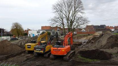 Opvallende verhuis: vijfstammige lindeboom achter gemeentehuis 70 meter verplaatst