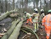 'Vermijd het bos in het weekend'