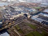 'Silicon Valley van glastuinbouw': Inkrimpen van veilingterrein tóch een gouden kans voor Westland