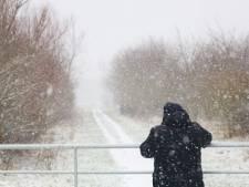 Oost-Nederland wordt wakker in besneeuwde wereld: stuur ons jouw mooiste sneeuwfoto in!