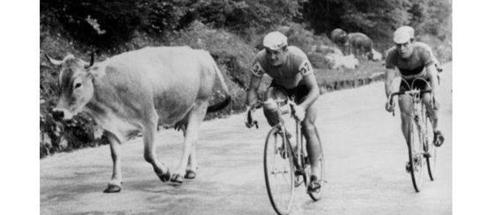 Ward Janssens in 1968 met de Pool Poeviak in de Ronde van Oostenrijk.
