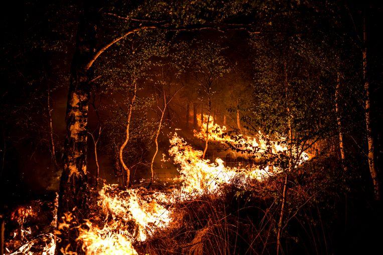 Vuurhaarden bij de natuurbrand in de Mariapeel nabij Deurne. Beeld ANP