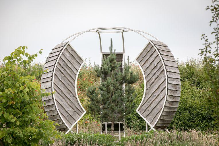 Rob Sweere, Growing my own Wood op Landgoed Anningahof.  Beeld Natascha Libbert