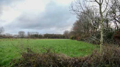 Porrebeek-Paddebeek en Beneden-Dender officieel erkend als natuurreservaat
