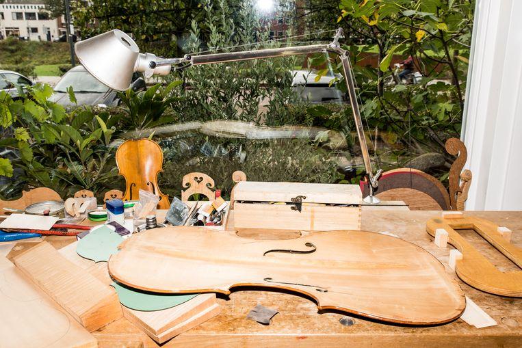 De binnenkant van een bovenblad van een cello. Beeld Jan Mulders