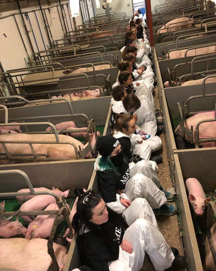 Een foto van tientallen actievoerders in Boxtel, gemaakt door een actievoerder zelf. Ze zaten tussen de hokken.