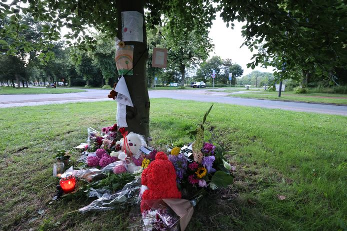 Op de Schaapweg in Rijswijk werd een gedenkhoekje ingericht voor de overleden Shanna.