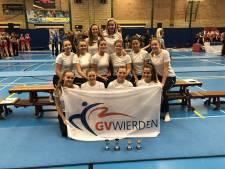 Medailles voor springteam GV Wierden op het NK