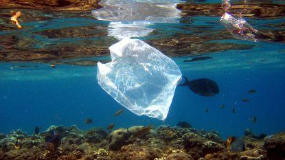 """""""Veel grotere hoeveelheden plastics op oceaanbodem dan aan oppervlak"""""""