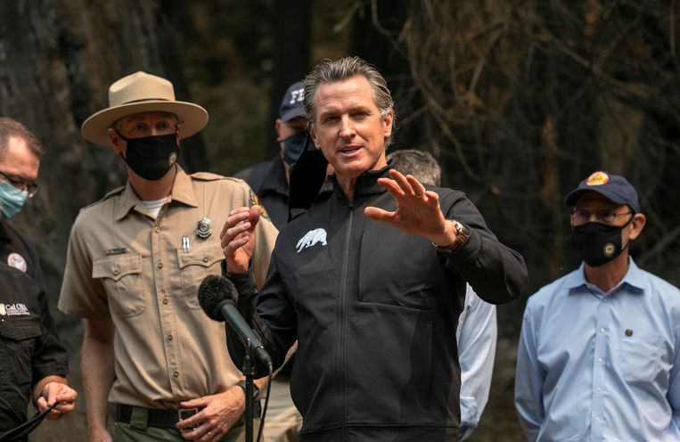 De gouverneur van Californië, Gavin Newsom, op een persconferentie in Big Basin Redwoods State Park, nadat hij de schade door de bosbranden ter plekke heeft opgenomen. Beeld AP