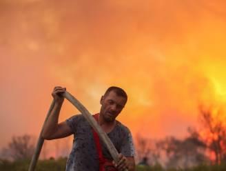 """Duizenden op de vlucht voor grote brand in noorden van Athene: """"Achter ons is de hel"""""""