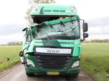 Boom waait om in Haarle en valt op vrachtwagen, chauffeur komt met de schrik vrij