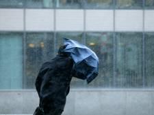 Des rafales de vent vont s'abattre sur la Belgique