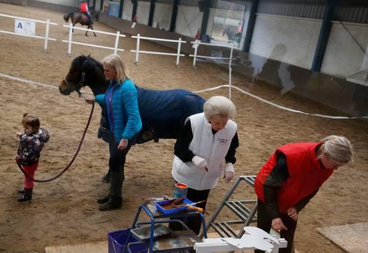 Prinses Beatrix in de paardenbak