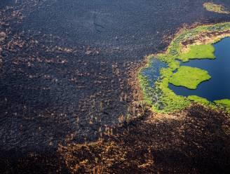 Rusland kampt nog steeds met 177 bosbranden