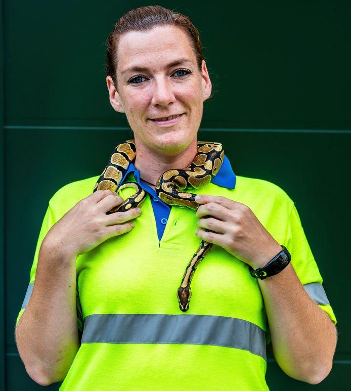 Ilona van der Ende, medewerkster van de Dierenambulance met de ontsnapte Python.