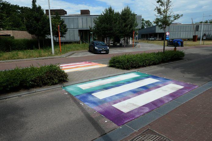 Het regenboogzebrapad op de Waversesteenweg.