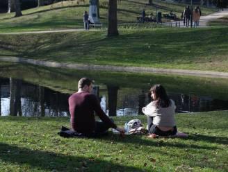 Politie Leuven redt eendenkuikentjes van verdrinking