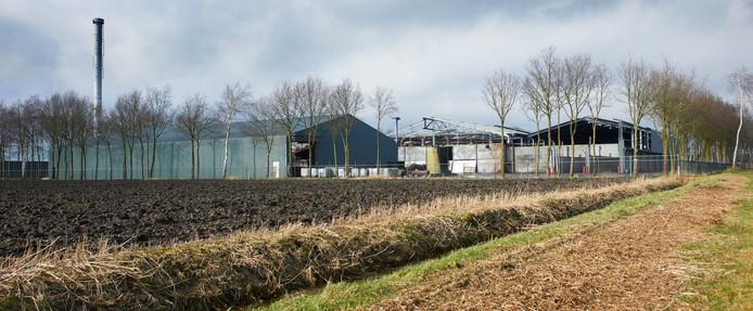 Het terrein in de buurt van Odiliapeel waar Albers BV mogelijk varkensmest gaat verwerken. Tot 2011 zat hier het bedrijf Ferm-o-Feed.