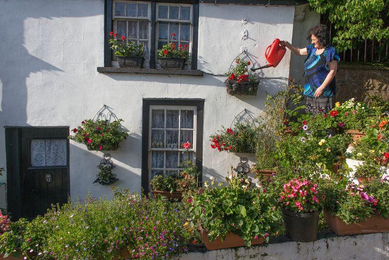 De liefde voor tuinen is volgens Corinne Fowler problematisch en van oudsher elitair Beeld Ton Koene