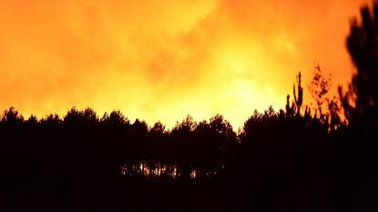 Bosbrand bij Bordeaux