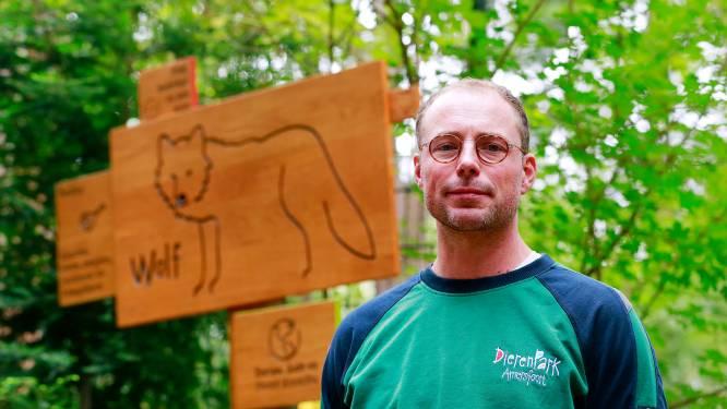 Dierenverzorger Willem vol ongeloof over ontsnapping wolven: 'Dit was echt de wet van Murphy'