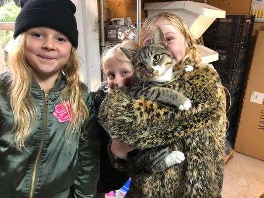 De kat die zusjes (vlnr) Lizzy, Floortje en Lotte uit het water redden in Sleeuwijk, hebben ze Tijgertje genoemd.