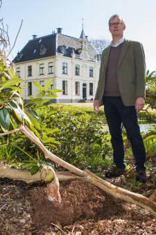Waar blijven de karakteristieke rododendrons als er veel minder regen valt? Buitenplaatsen in Salland op zoek naar oplossingen