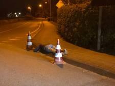Feestganger valt op straat in slaap in Rockanje