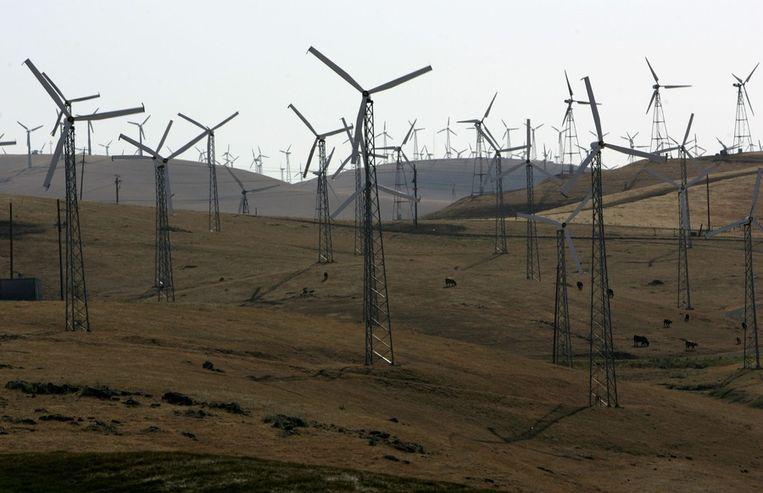 De 'wind farm' op de Altamont Pass in de Amerikaanse staat Californië. Beeld Getty Images